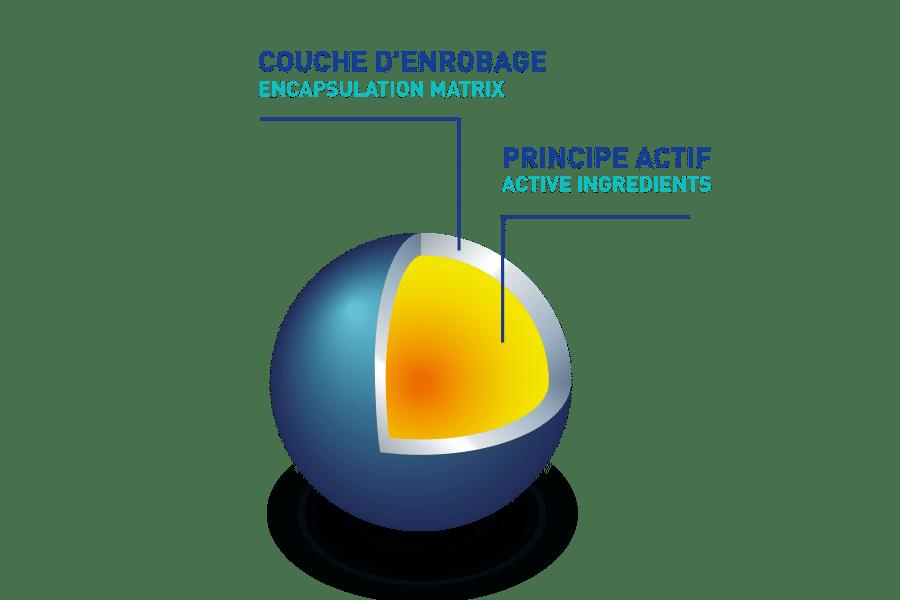 Couche d'enrobage et principe actif de microencapsulation