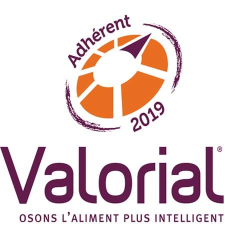 Valorial logo